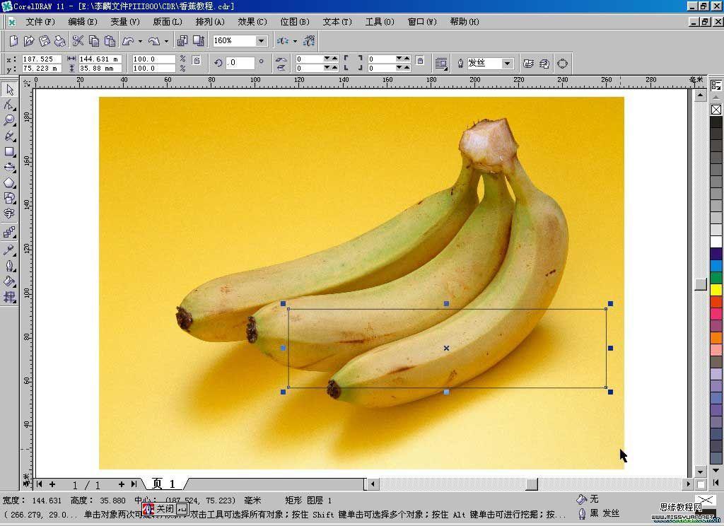 文字教程 coreldraw教程  下面切入正题,开始我们的网格香蕉制作历程